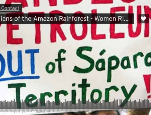 Guardians of the Amazon Rainforest – Women Rising Radio