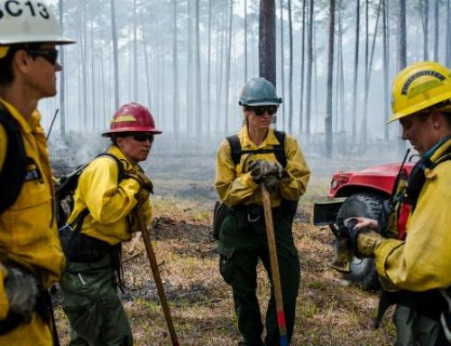 The Women Battling Wildfires And Breaking Barriers In The American Wilderness