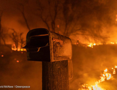 California Wildfires: Intersecting Crises & How To Respond
