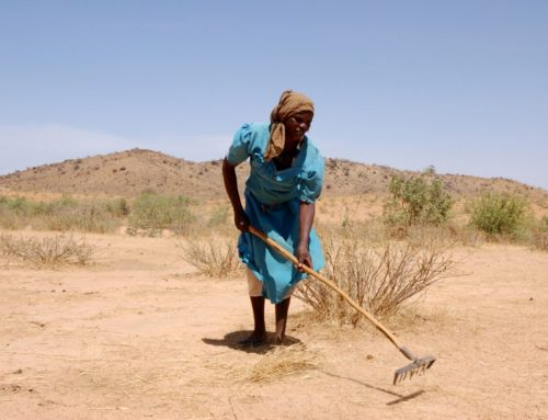 For People On The Front Lines Of Climate Change And Conflict, COVID-19 Is A New Challenge
