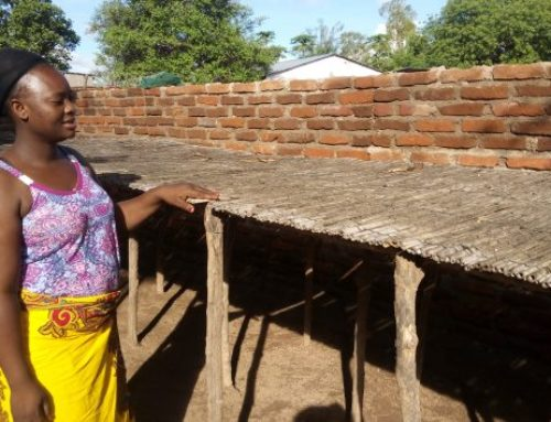 Overfishing Threatens Malawi's Blue Economy