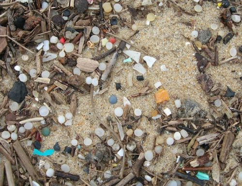 Nurdle by Nurdle, Citizens Took on A Billion-Dollar Plastic Company — and Won