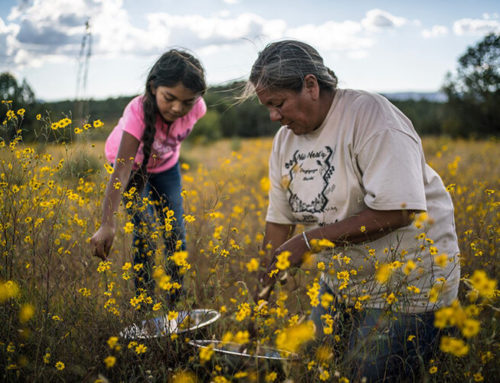 Local Indigenous People Gather To Bring Back Food Sovereignty